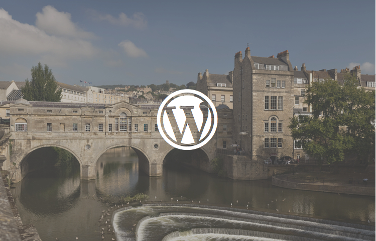 We're Looking for a WordPress Plugin Developer