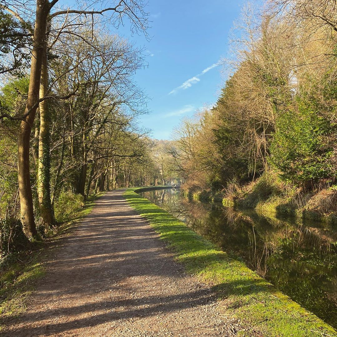 A beautiful morning walk along the canal path